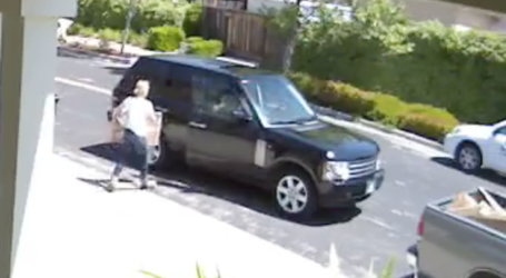 Range Rover Package Thieves Strike in Dublin