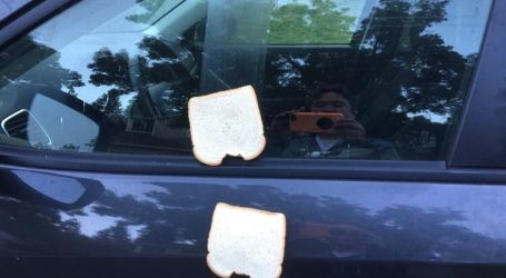 Vandals Use Sandwiches to Vandalize Danville Neighborhood