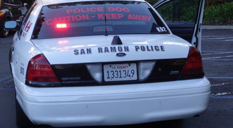 Juveniles discharge fire extinguishers during San Ramon elementary school burglary