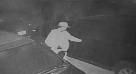 Video: Thieves seen on security video stealing from multiple parked vehicles in Danville, Alamo